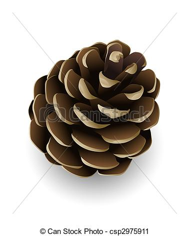... pine cone isolated - single pine tree cone isolated... pine cone isolated Clipartby ...