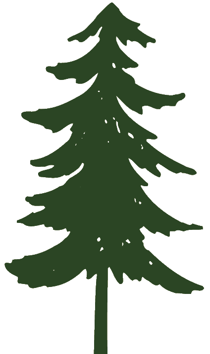 Pine Tree Graphic Free Cliparts That You Can Download To You