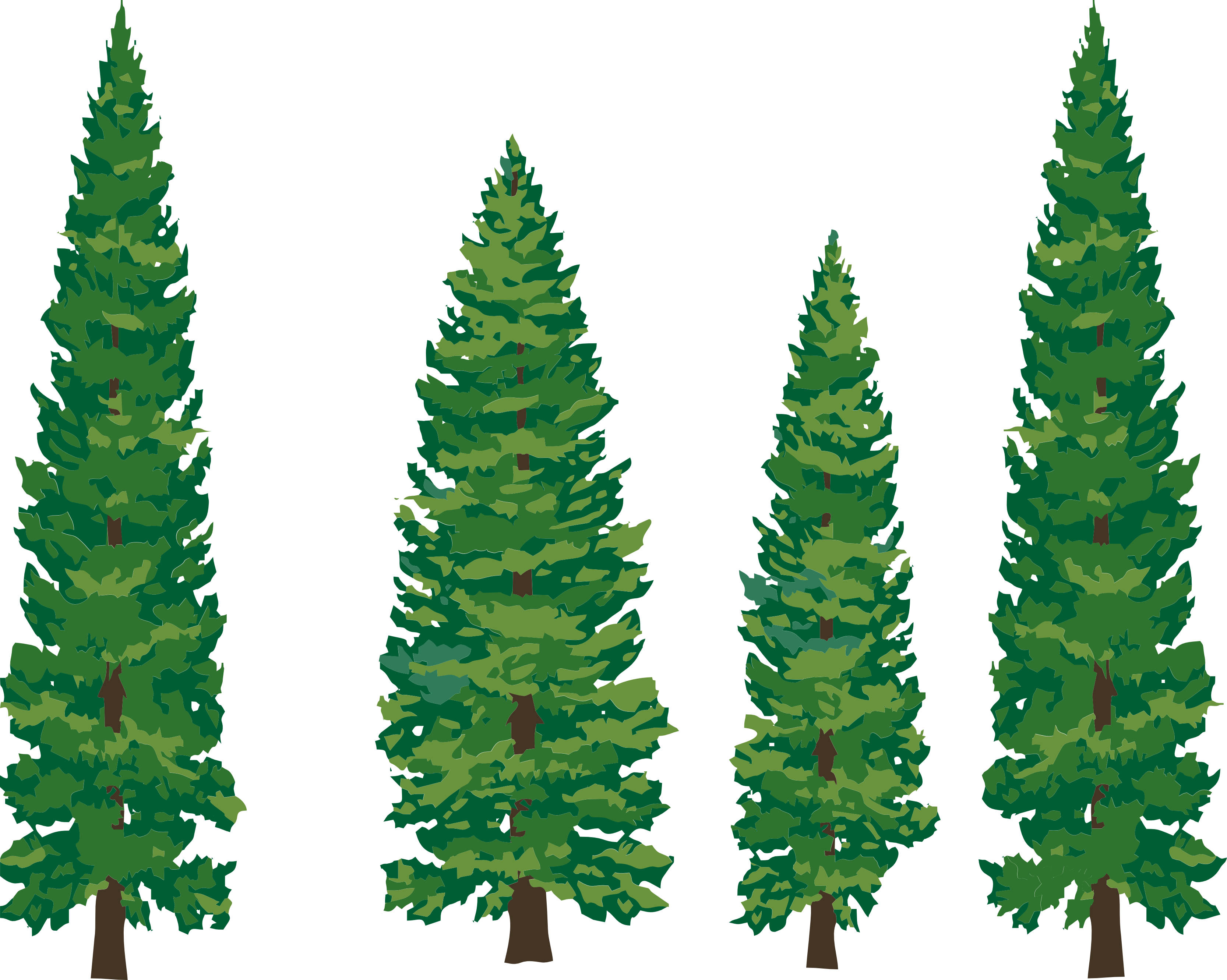 Pine Tree Images Clip Art - Clipart library