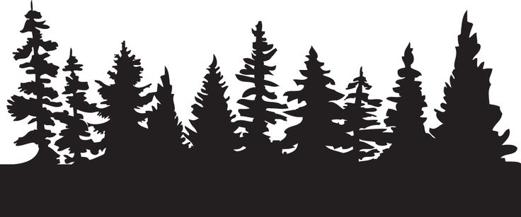 pine tree scene silhouette