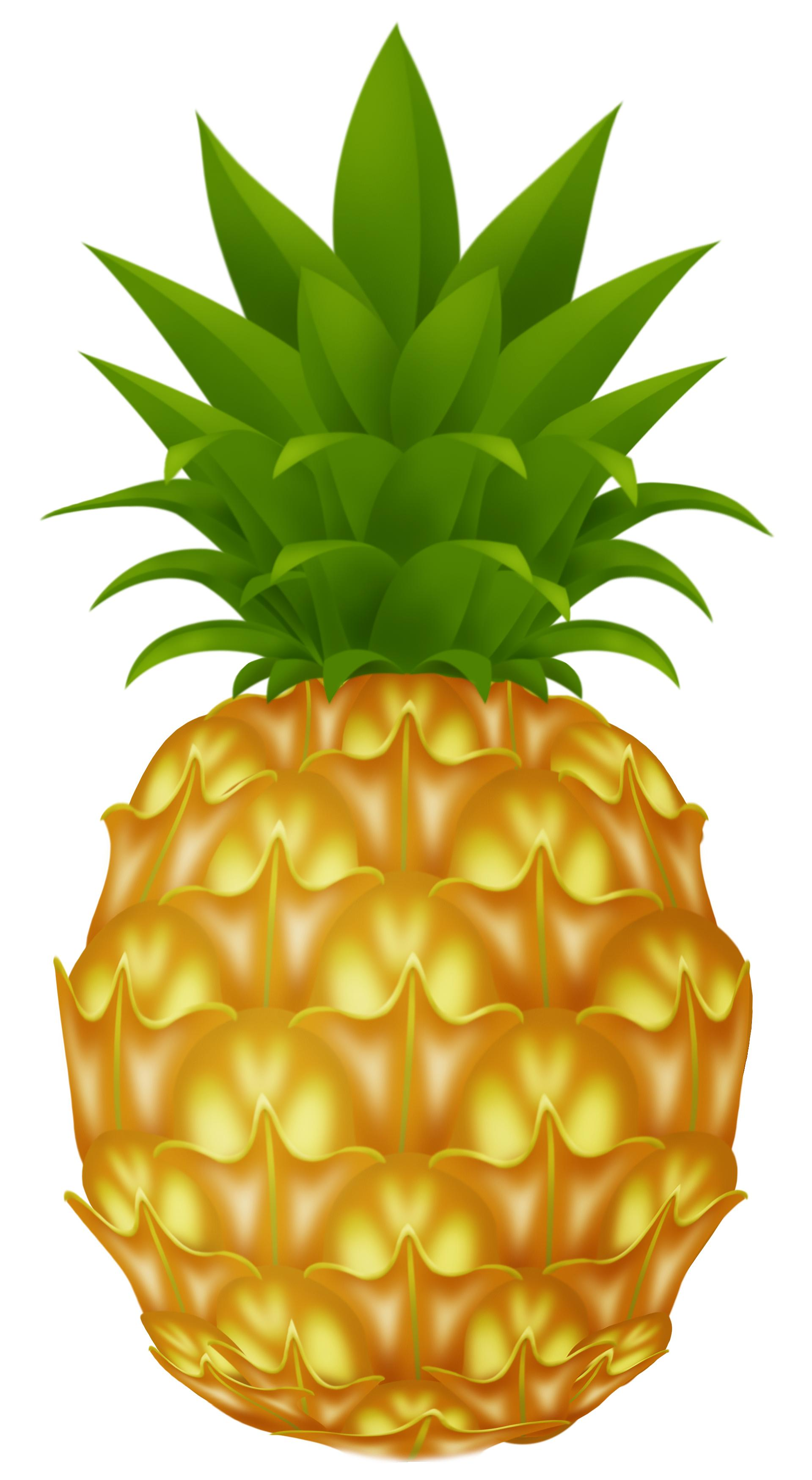 Pineapple PNG image free pictures download