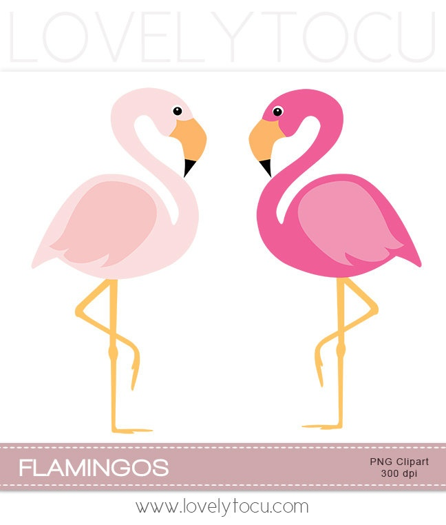Pink flamingo clipart, a pair of pink birds digital PNG clip art (30)