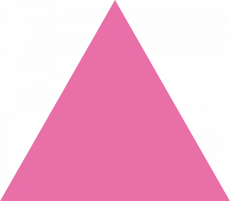 Pink Triangle Shaped Magnets