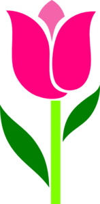 pink tulip leaves askew clip simple clipart