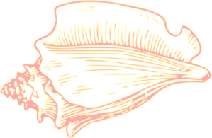 Pink Yellow Conch Shell Clip Art