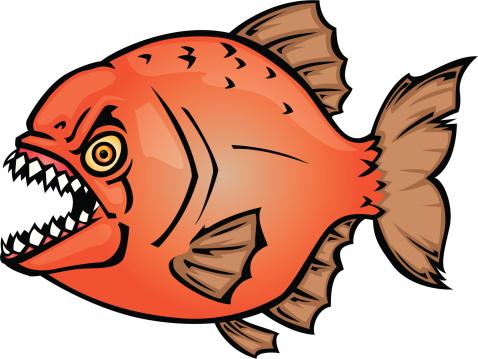 ... Piranha Clip Art, Vector Images u0026amp; Illustrations ...