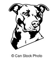 ... pit bull - dangerous dog who keeps house
