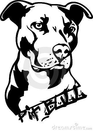 Pitbull Stock Illustrations u2013 316 Pitbull Stock Illustrations, Vectors u0026amp; Clipart - Dreamstime