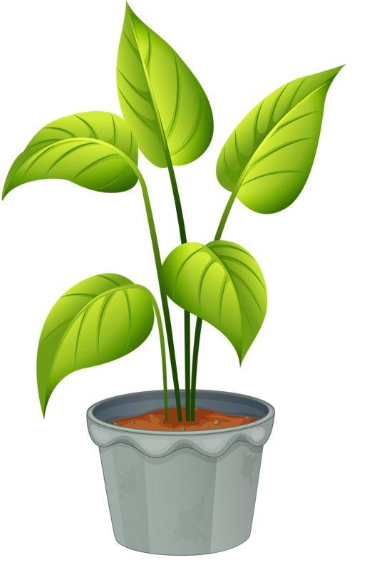 ... Plant Clipart; Pics ...