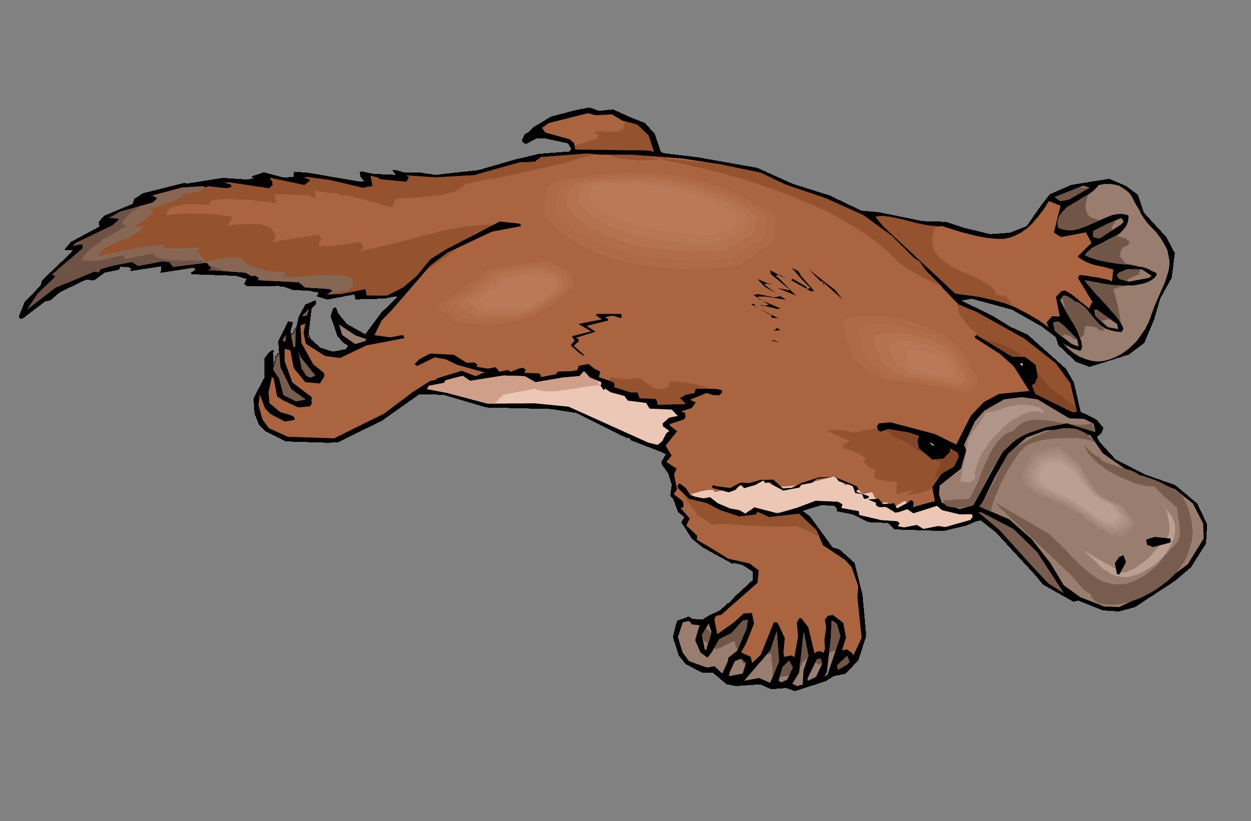 Platypus Clip Art