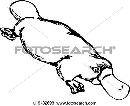 Platypus. ValueClips Clip Art