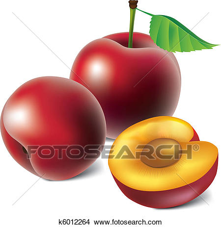 Clipart - Vector plums . Fotosearch - Search Clip Art, Illustration Murals,  Drawings and