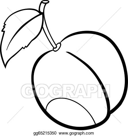 plum fruit illustration for coloring book