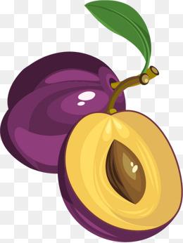 png plum fruits vector material, Vector, Vector Material, Vector Fruit PNG  and Vector