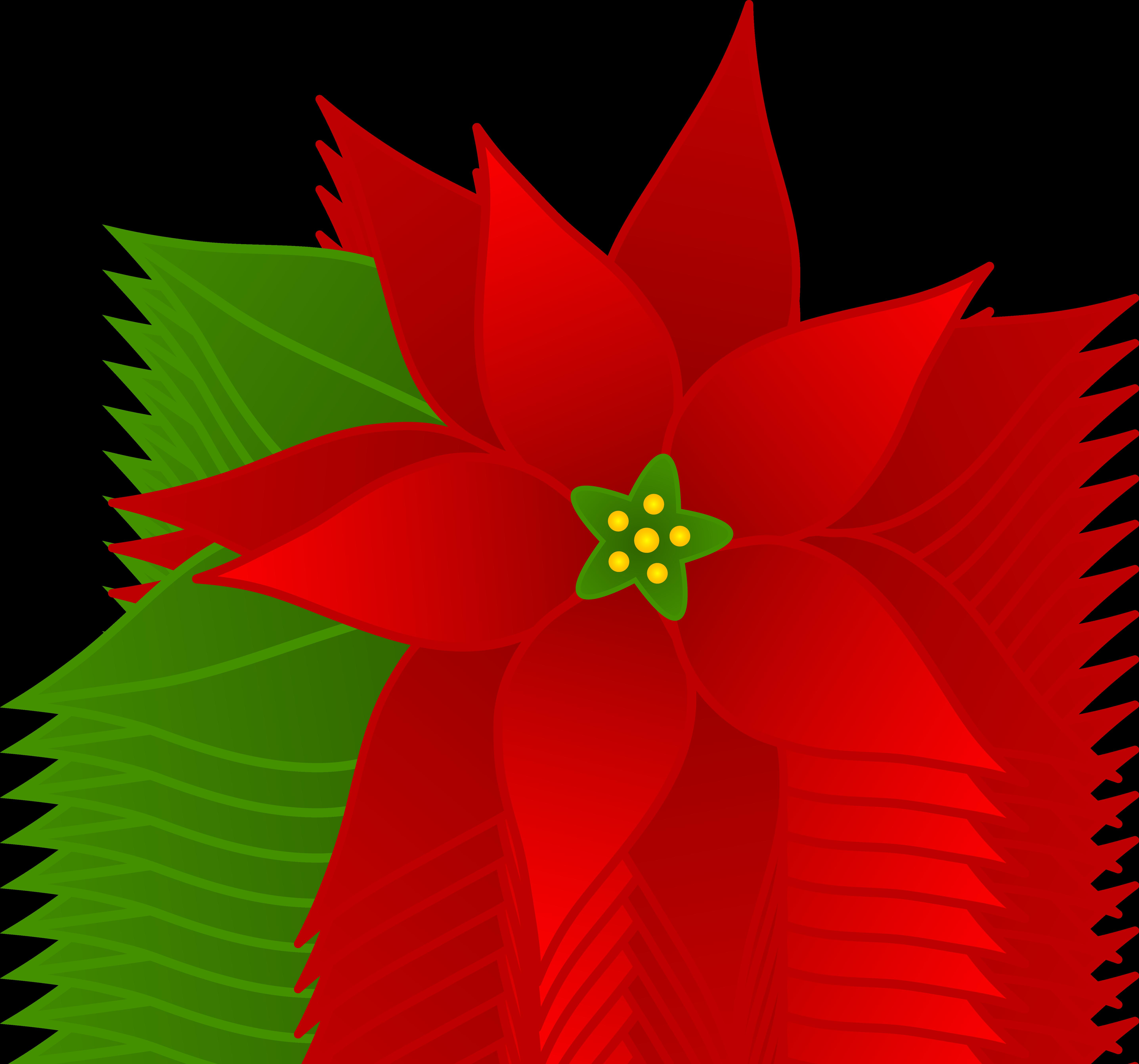 Poinsettia cliparts