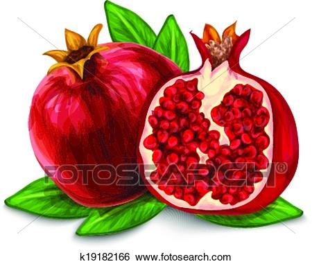 Clip Art - Pomegranate isolated poster or emblem. Fotosearch - Search  Clipart, Illustration Posters