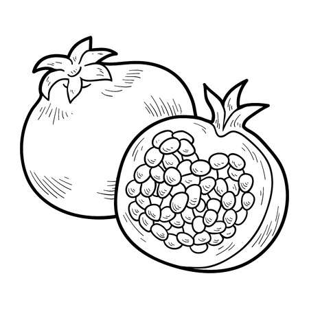 Coloring book for children: fruits and vegetables (pomegranate)