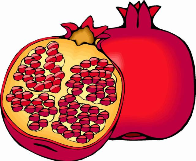 Pomegranate Fruit Clipart #1