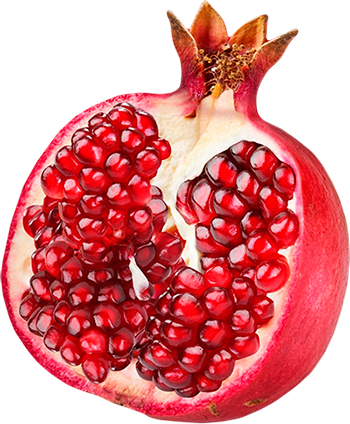 Pomegranate PNG image free Pomegranate Clipart