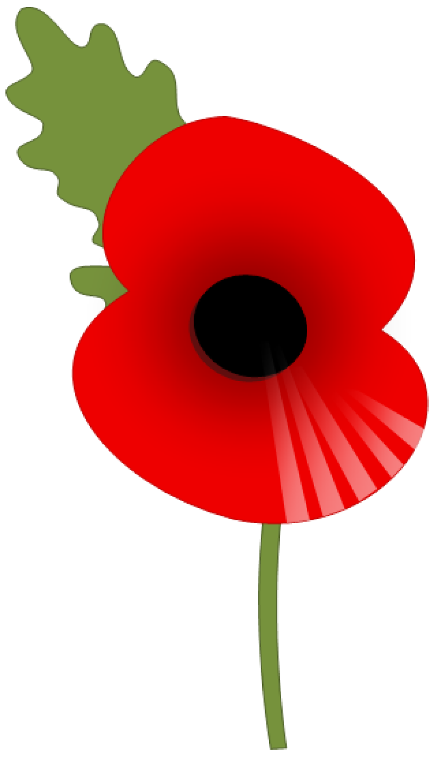 Poppy Clipart One #11