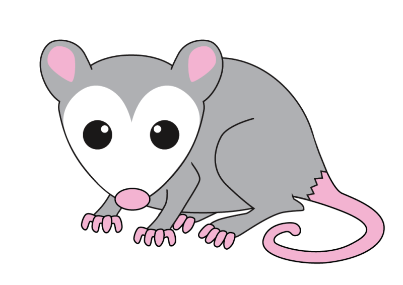 Cute possum clipart