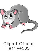 Opossum clipart australian possum #1