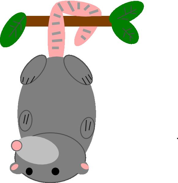 Possum Free Clipart #1