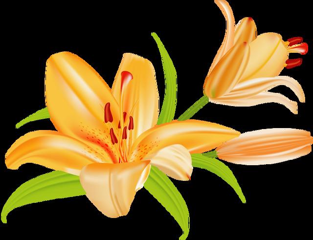 Pretty Flower Clip Art