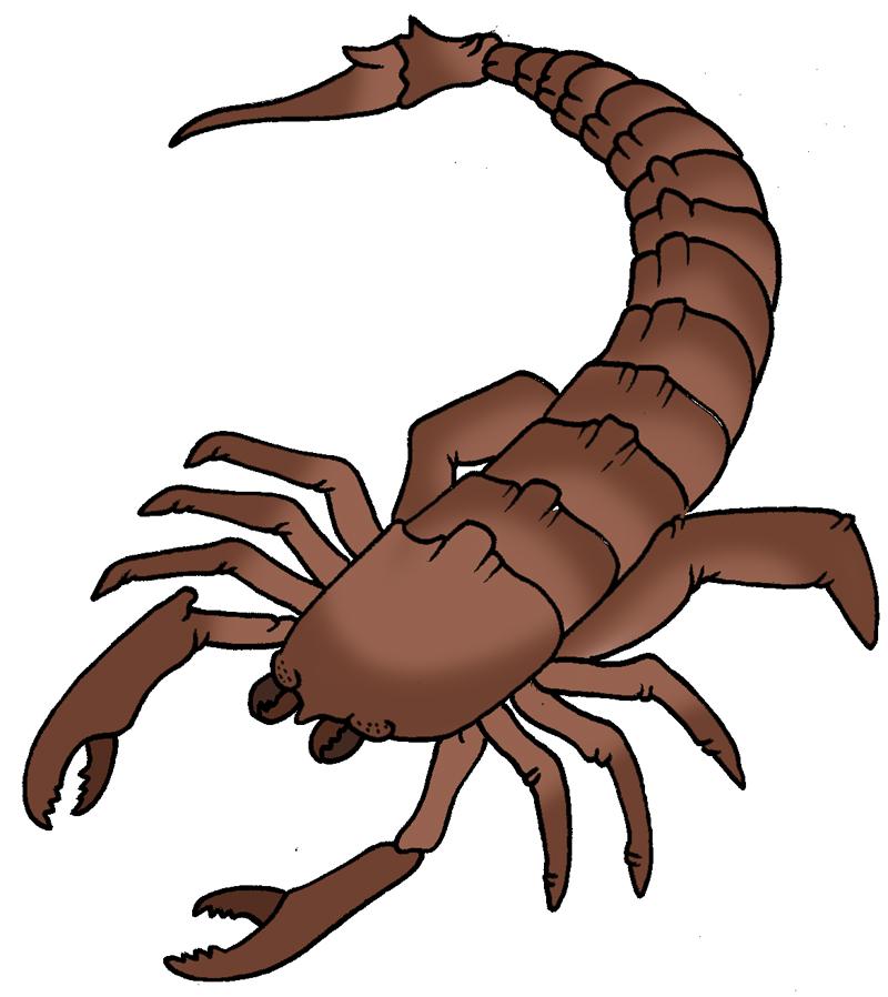Primeval Silurian Sea Scorpion Clipart Best Clipart Best