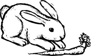 Rabbit Clipart Black And White & Rabbit Black And White ...