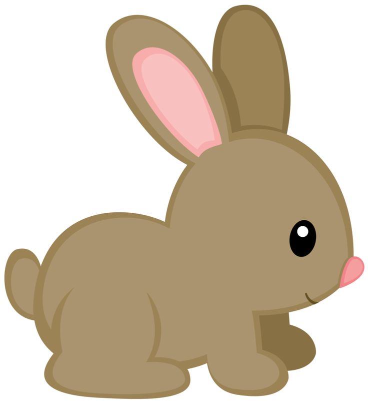 Bunny rabbit clipart ideas on easter pictures to