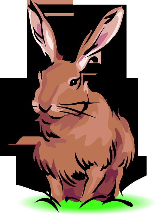 Rabbit clipart free clipart .