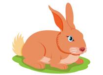 Rabbit Clipart. Size: 56 Kb