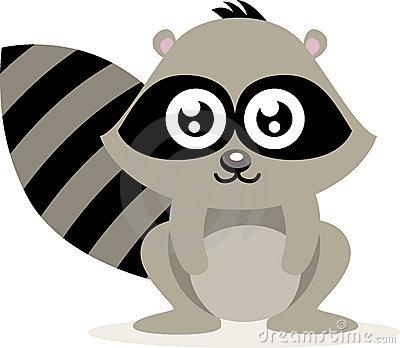Raccoon Clip Art. Raccoon Stock Images Image