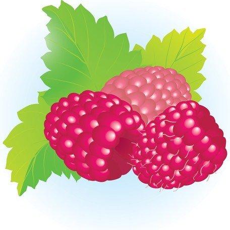 Free Raspberries