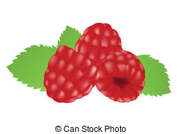 Raspberry Icon Clip Artby Thilien2/27 Raspberries On The White Background.  Mesh.