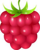 Raspberry Icon; Raspberry