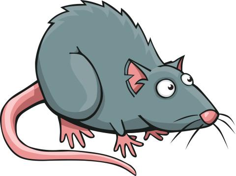 Clipart Rat Rat Clipart Sportekevents Space Clipart