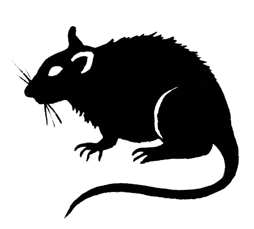 Rat Clipart #17563 - Rat Clipart