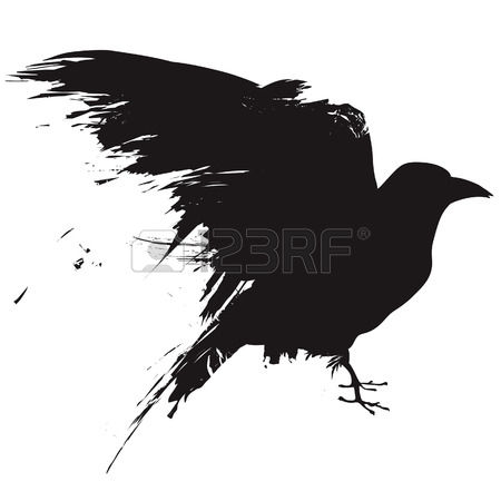 Vector illustration of the silhouette of a raven in grunge style.  Illustration