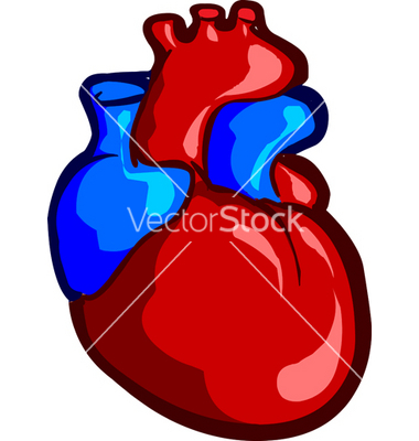 Real Heart Clipart Heart Clipart History Clipart