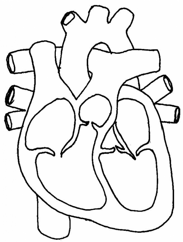 Real heart the label of a human heart real clipart clip art