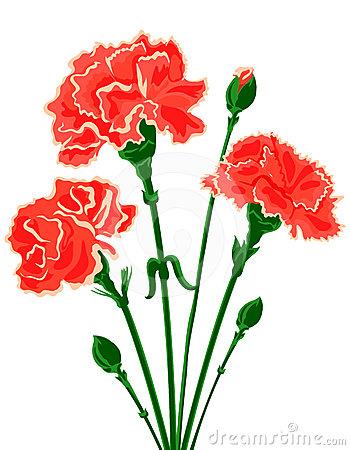 Red Carnation Clipart Carnation Flower Clip