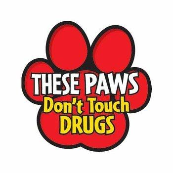 Red Ribbon Week Guadalupe - wants a tree of these with different colors for each grade