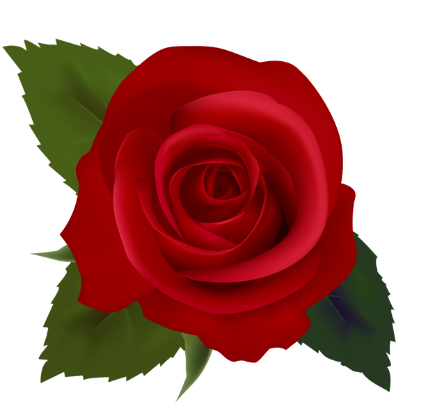 Red Roses Clip Art Images   C - Rose Clipart