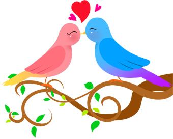 Red Valentine Love Birds. 3c7b706777a5e14206b20e3a41c51a .