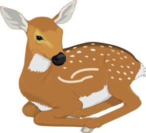 Resting Baby Deer Clip Art