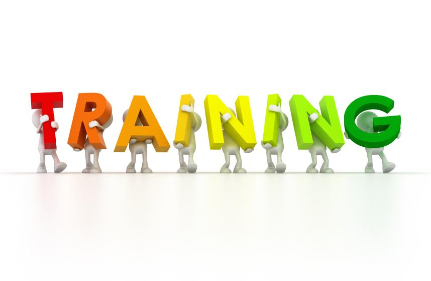 Roi Gains Through Employee Training Profitguide Com