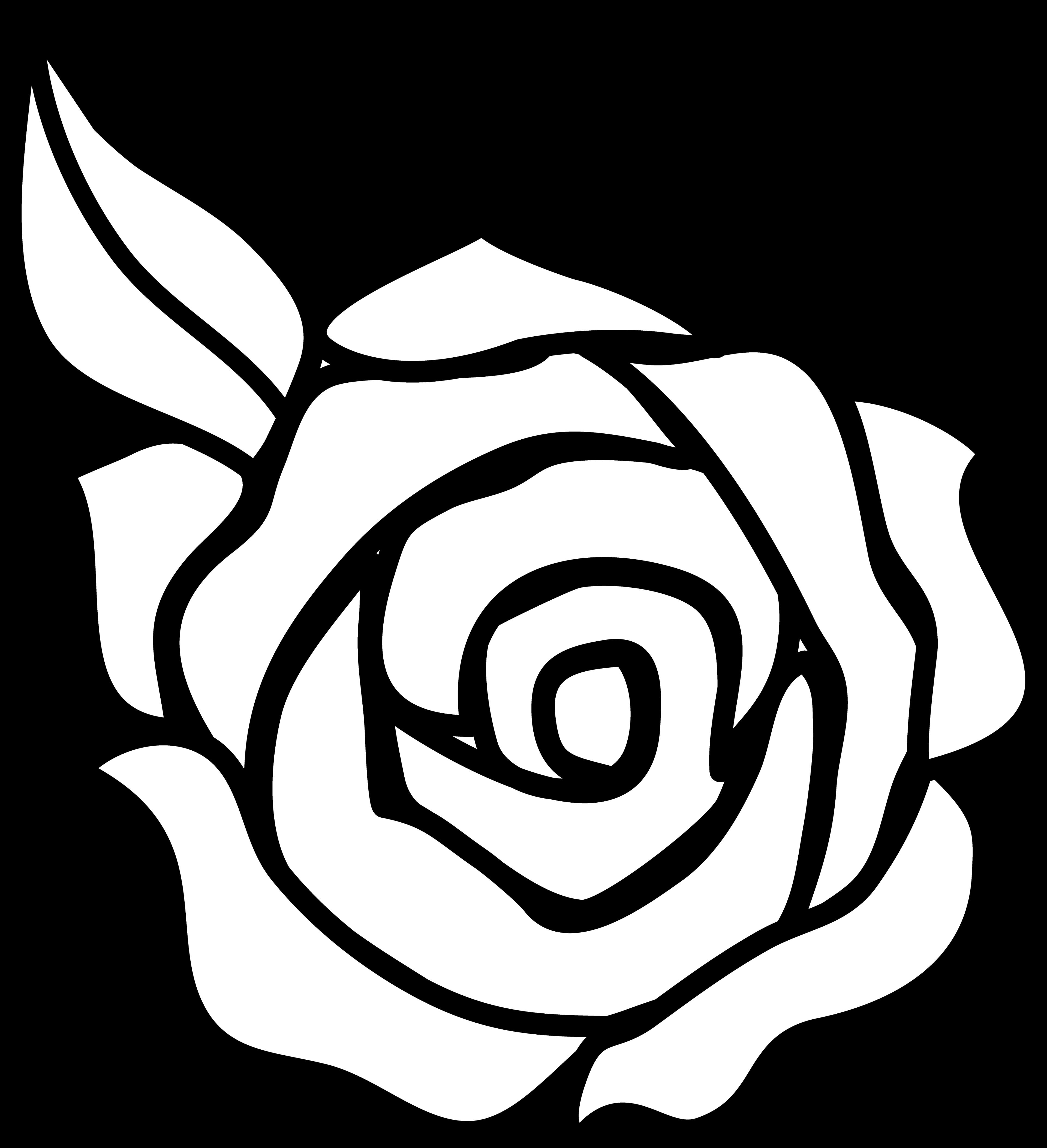 Rose Outline Clipart Panda .