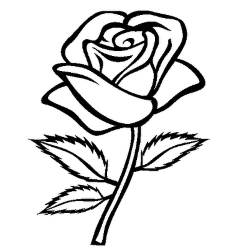 Rose Clipart Black and White  - Roses Clipart
